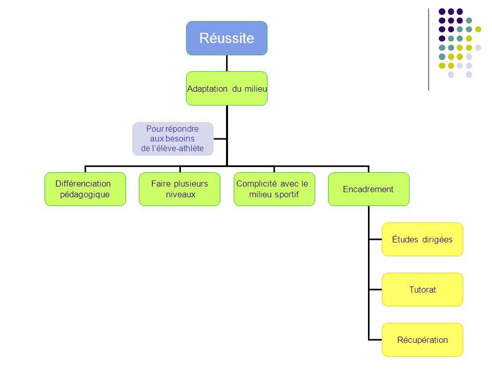 Réussite Adaptation du milieu Différenciation pédagogique