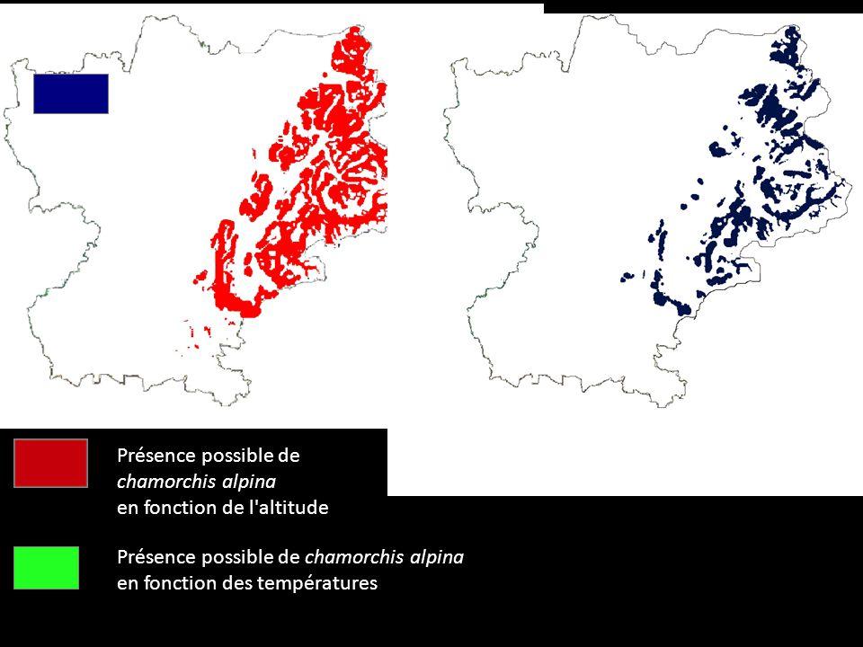 Présence possible de Chamorchis Alpina d'après nos cartes