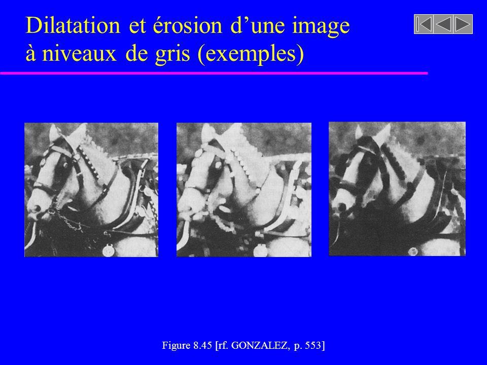 Dilatation et érosion d'une image à niveaux de gris (exemples)