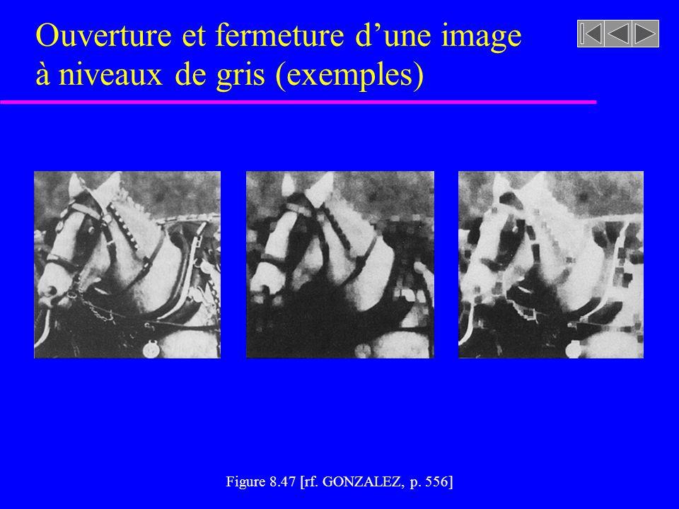 Ouverture et fermeture d'une image à niveaux de gris (exemples)