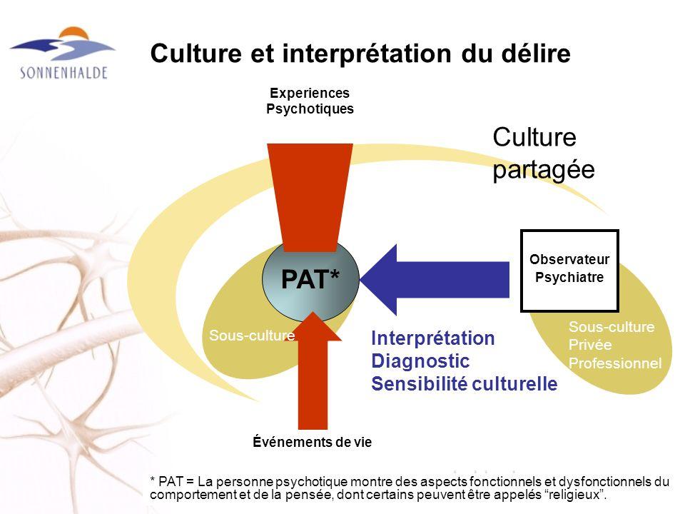 Culture et interprétation du délire