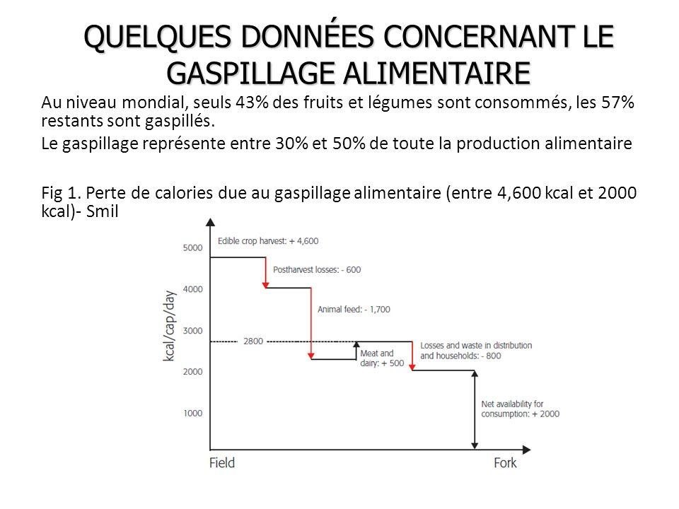 QUELQUES DONNÉES CONCERNANT LE GASPILLAGE ALIMENTAIRE