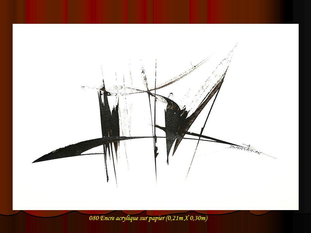 080 Encre acrylique sur papier (0,21m X 0,30m)