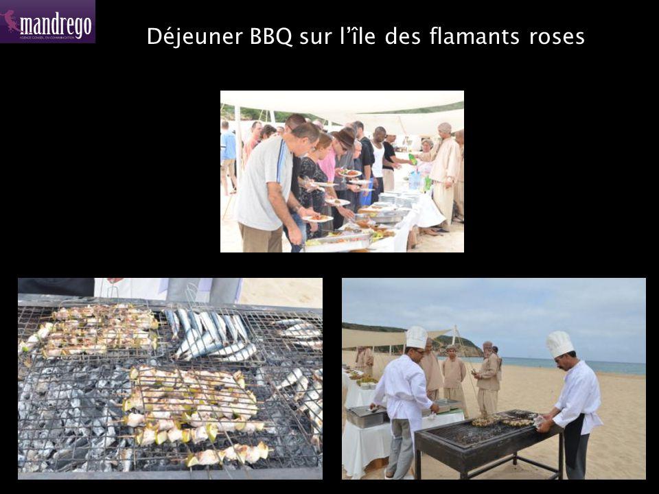 Déjeuner BBQ sur l'île des flamants roses