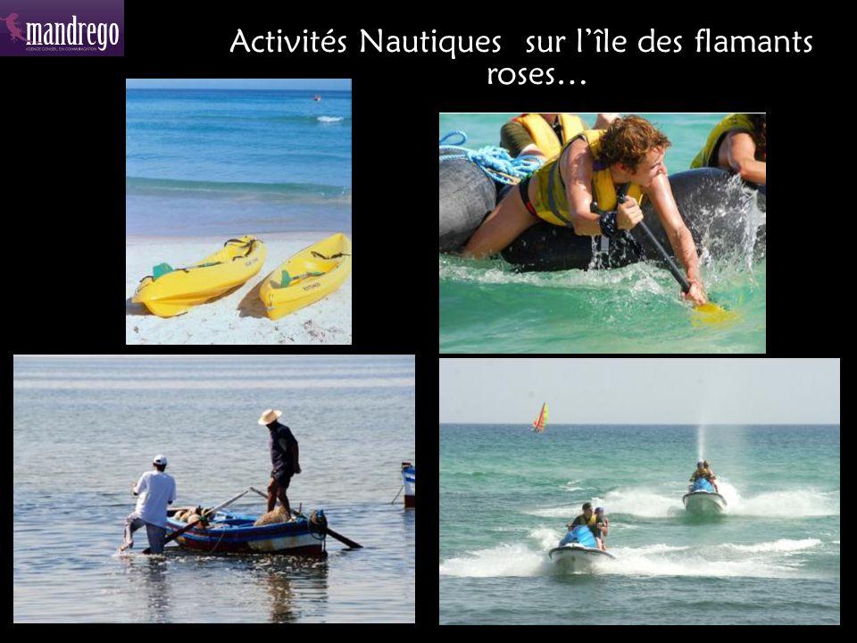 Activités Nautiques sur l'île des flamants roses…