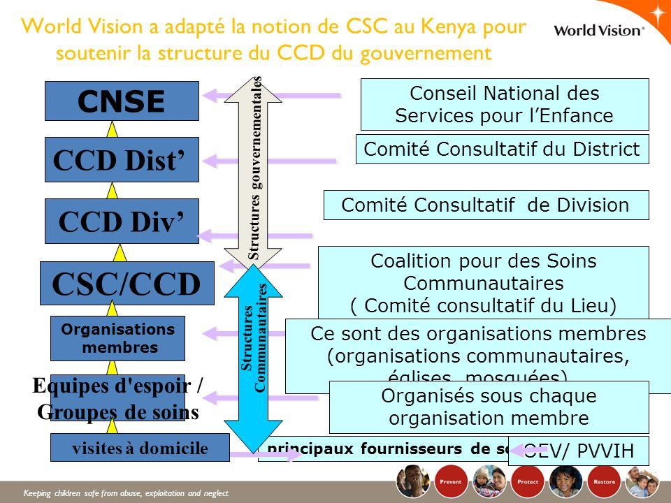 CSC/CCD CNSE CCD Dist' CCD Div'