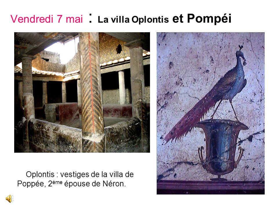 Vendredi 7 mai : La villa Oplontis et Pompéi