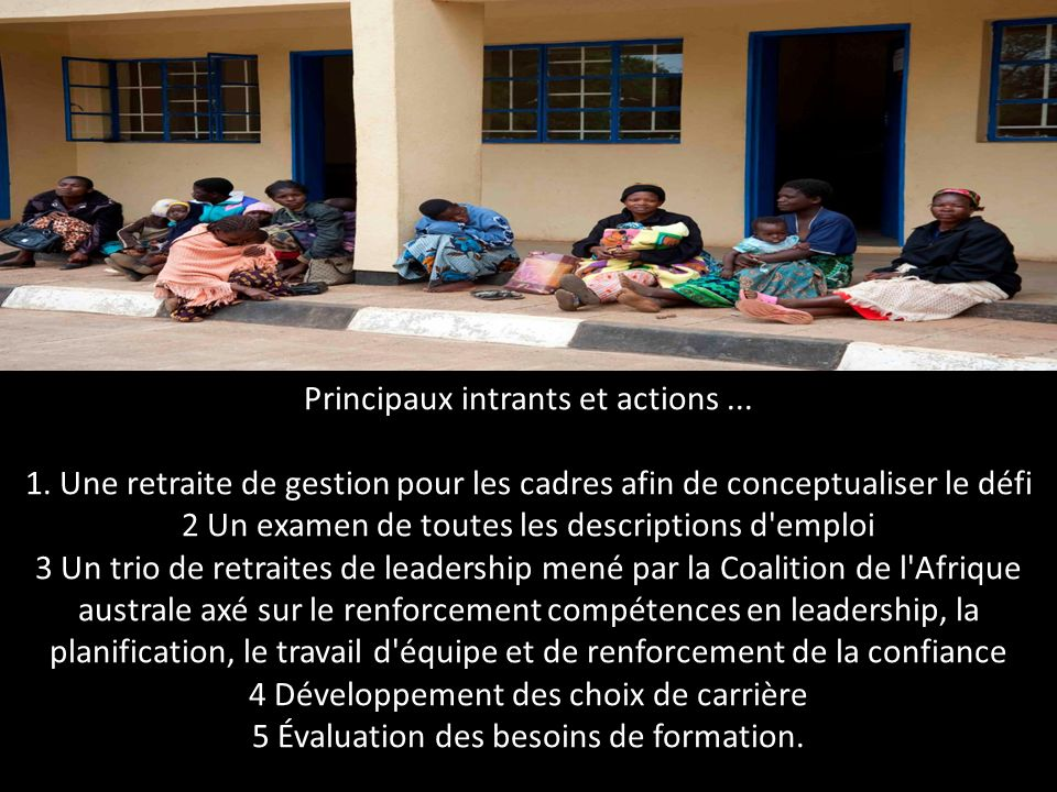 Principaux intrants et actions. 1
