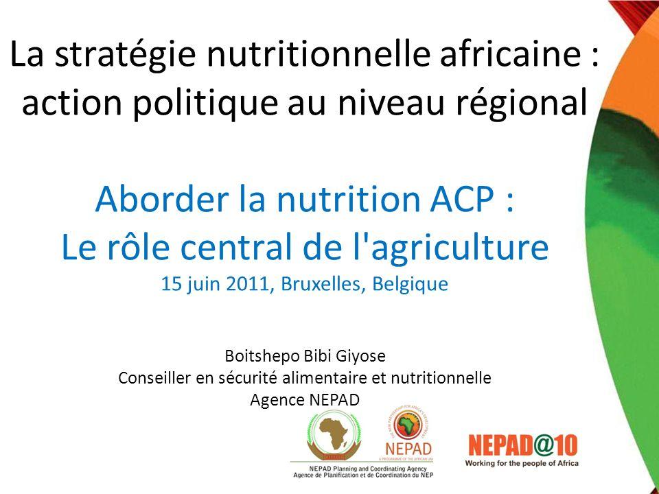 La stratégie nutritionnelle africaine : action politique au niveau régional Aborder la nutrition ACP : Le rôle central de l agriculture 15 juin 2011, Bruxelles, Belgique Boitshepo Bibi Giyose Conseiller en sécurité alimentaire et nutritionnelle Agence NEPAD