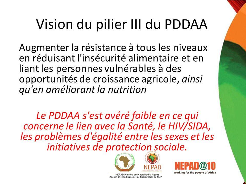 Vision du pilier III du PDDAA