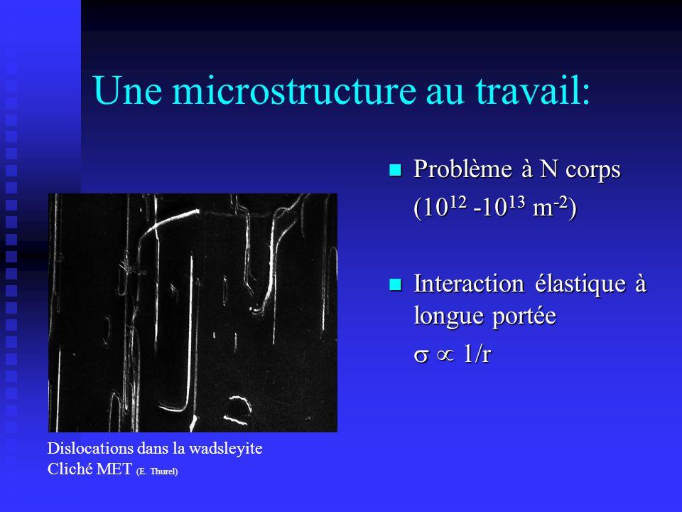 Une microstructure au travail: