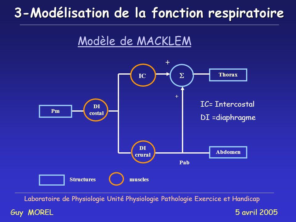 3-Modélisation de la fonction respiratoire