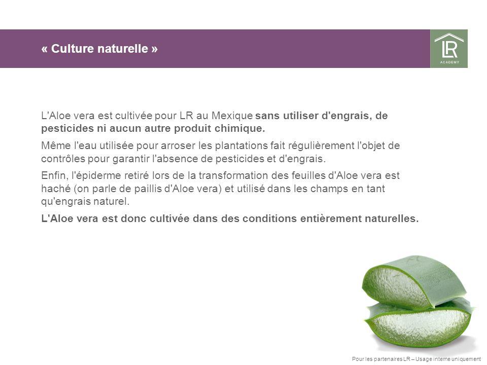 « Culture naturelle » L Aloe vera est cultivée pour LR au Mexique sans utiliser d engrais, de pesticides ni aucun autre produit chimique.