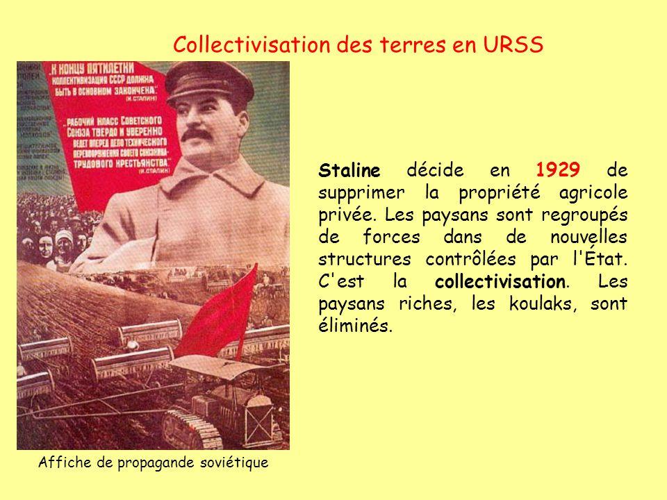 Collectivisation des terres en URSS