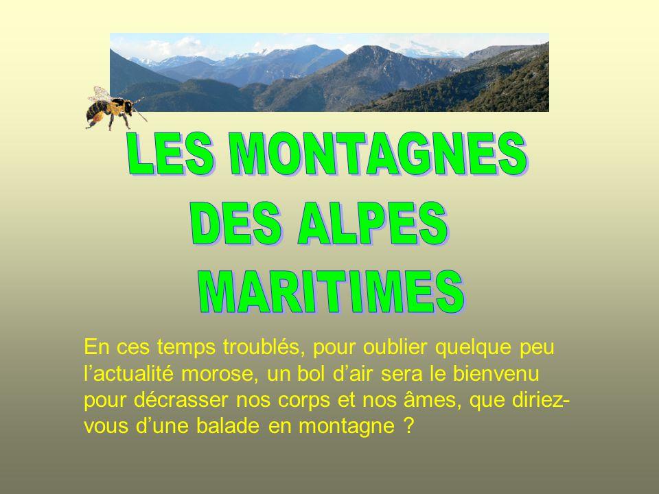 LES MONTAGNES DES ALPES MARITIMES