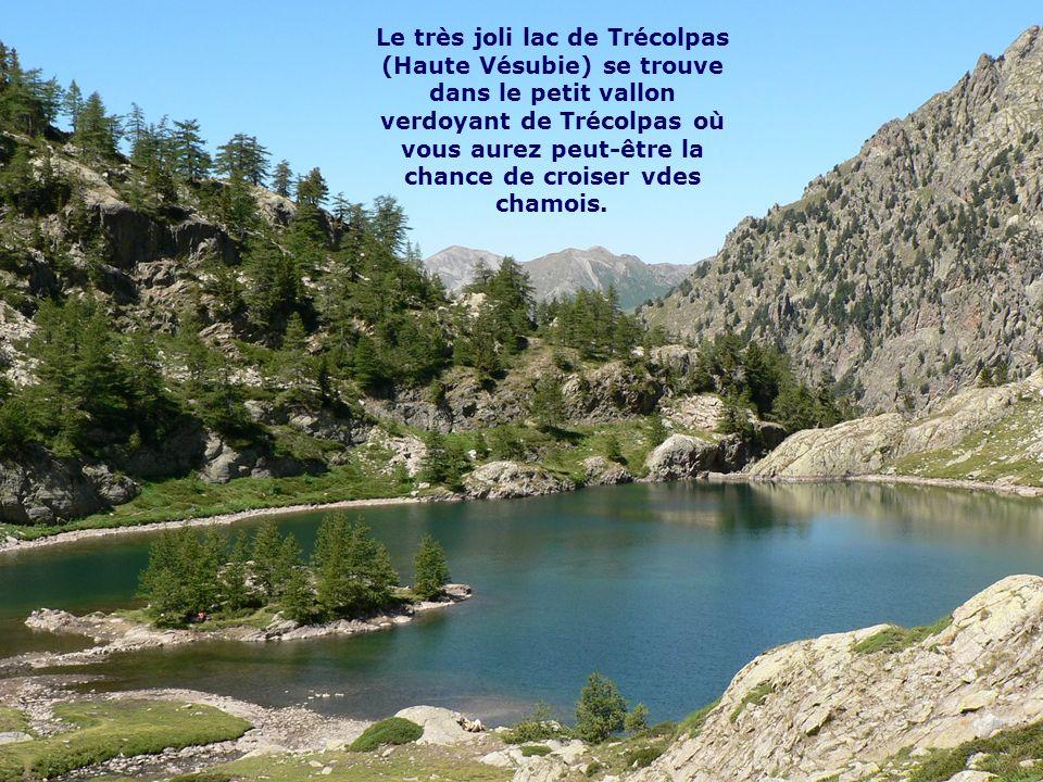 Le très joli lac de Trécolpas (Haute Vésubie) se trouve dans le petit vallon verdoyant de Trécolpas où vous aurez peut-être la chance de croiser vdes chamois.