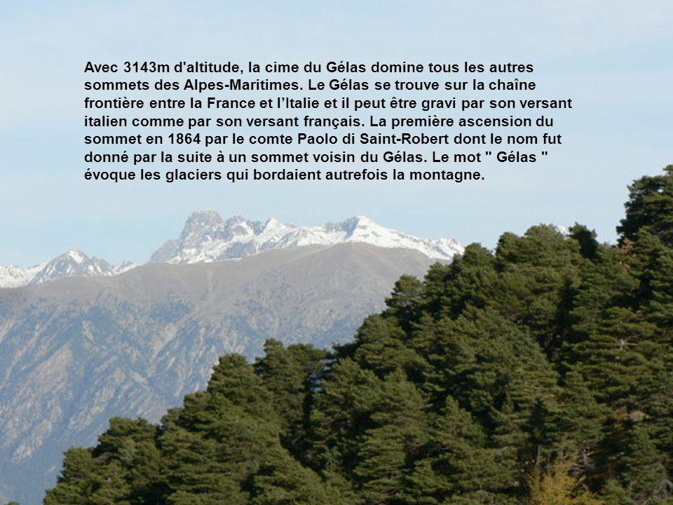 Avec 3143m d altitude, la cime du Gélas domine tous les autres sommets des Alpes-Maritimes. Le Gélas se trouve sur la chaîne frontière entre la France et l'Italie et il peut être gravi par son versant italien comme par son versant français. La première ascension du sommet en 1864 par le comte Paolo di Saint-Robert dont le nom fut donné par la suite à un sommet voisin du Gélas. Le mot Gélas évoque les glaciers qui bordaient autrefois la montagne.
