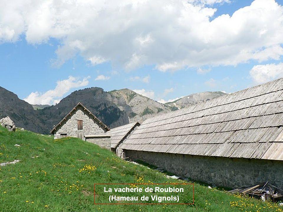 La vacherie de Roubion (Hameau de Vignols)