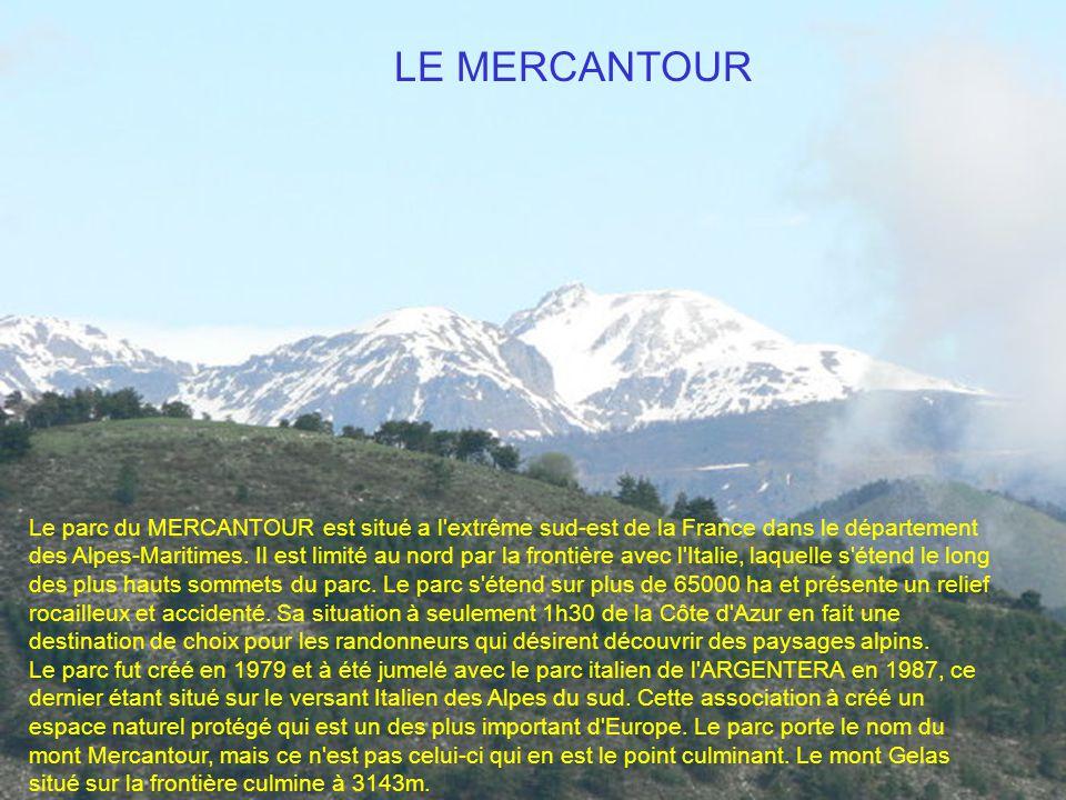 LE MERCANTOUR