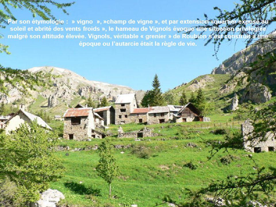 Par son étymologie : » vigno », »champ de vigne », et par extension »quartier exposé au soleil et abrité des vents froids », le hameau de Vignols évoque une situation privilégiée malgré son altitude élevée.