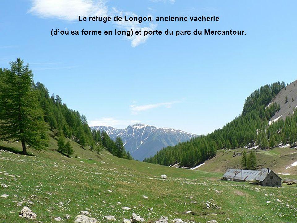 Le refuge de Longon, ancienne vacherie