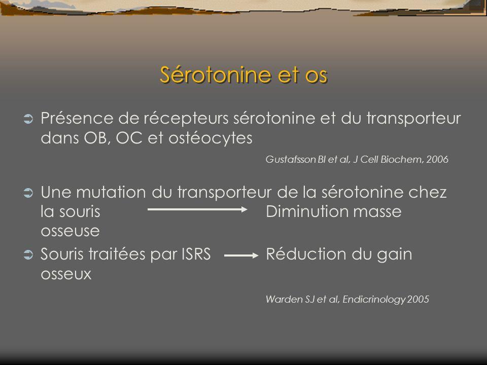 Sérotonine et os Présence de récepteurs sérotonine et du transporteur dans OB, OC et ostéocytes Gustafsson BI et al, J Cell Biochem, 2006.