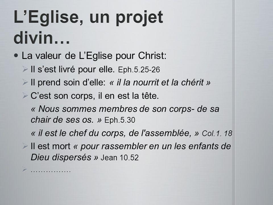 L'Eglise, un projet divin…