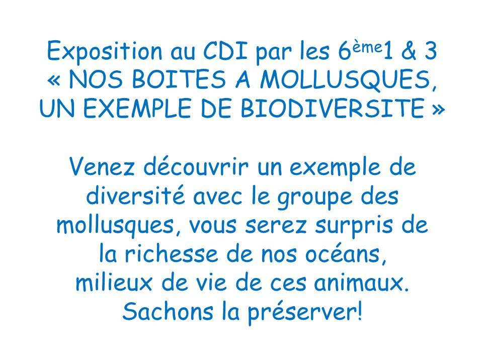 Exposition au CDI par les 6ème1 & 3 « NOS BOITES A MOLLUSQUES, UN EXEMPLE DE BIODIVERSITE » Venez découvrir un exemple de diversité avec le groupe des mollusques, vous serez surpris de la richesse de nos océans, milieux de vie de ces animaux.