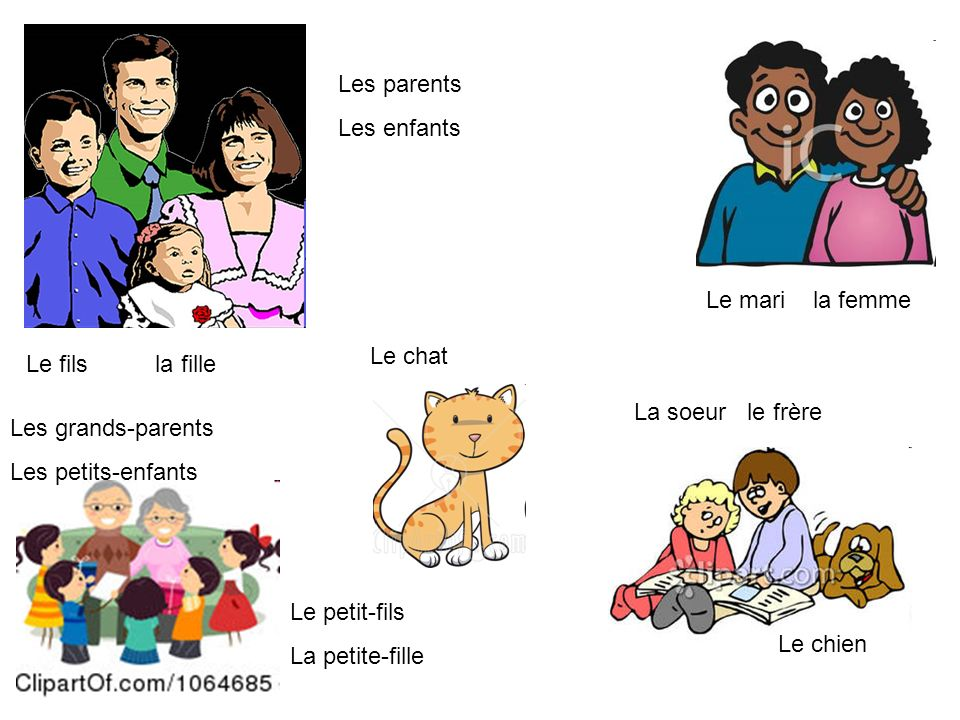 Les parents Les enfants. Le mari la femme. Le chat. Le fils la fille. La soeur le frère.