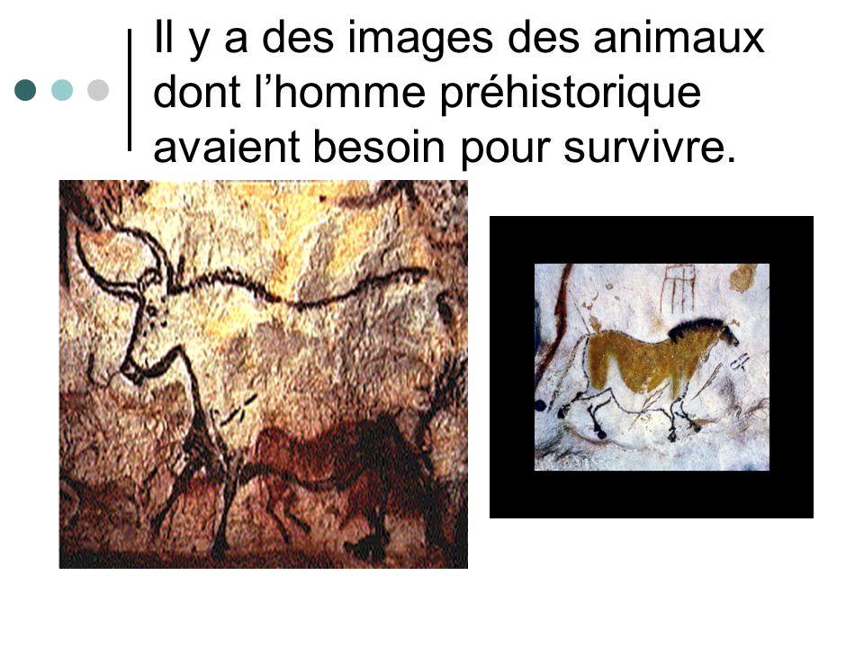 Il y a des images des animaux dont l'homme préhistorique avaient besoin pour survivre.