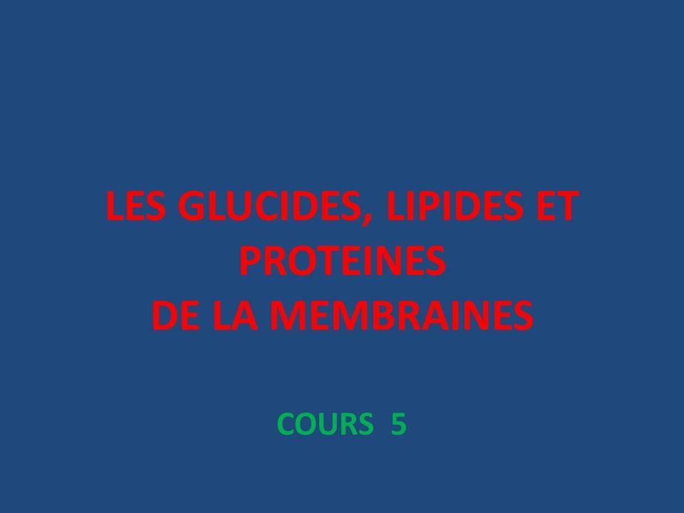 LES GLUCIDES, LIPIDES ET PROTEINES DE LA MEMBRAINES
