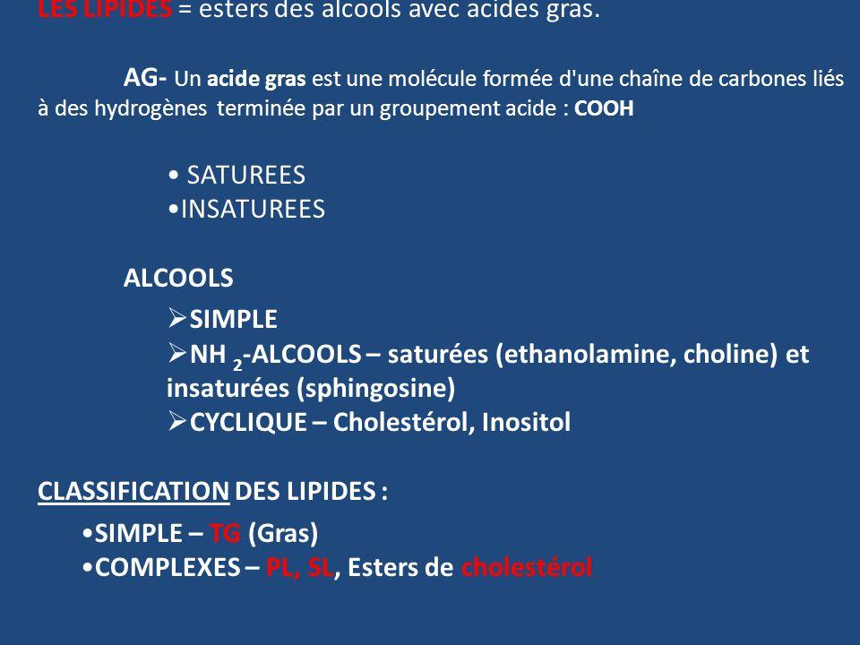 LES LIPIDES = esters des alcools avec acides gras.