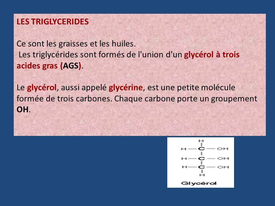 LES TRIGLYCERIDES Ce sont les graisses et les huiles. Les triglycérides sont formés de l union d un glycérol à trois acides gras (AGS).
