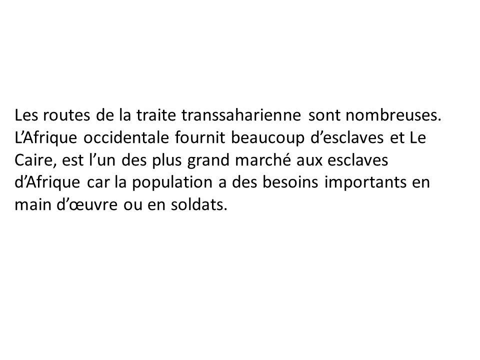 Les routes de la traite transsaharienne sont nombreuses