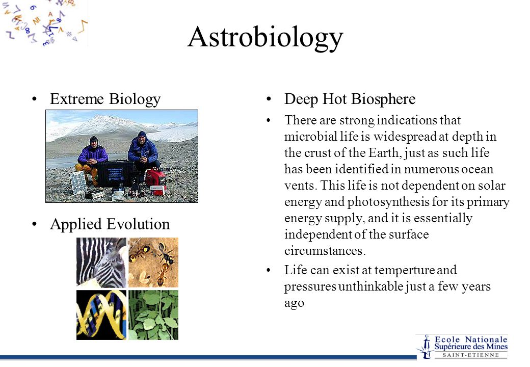 Astrobiology Extreme Biology Deep Hot Biosphere Applied Evolution