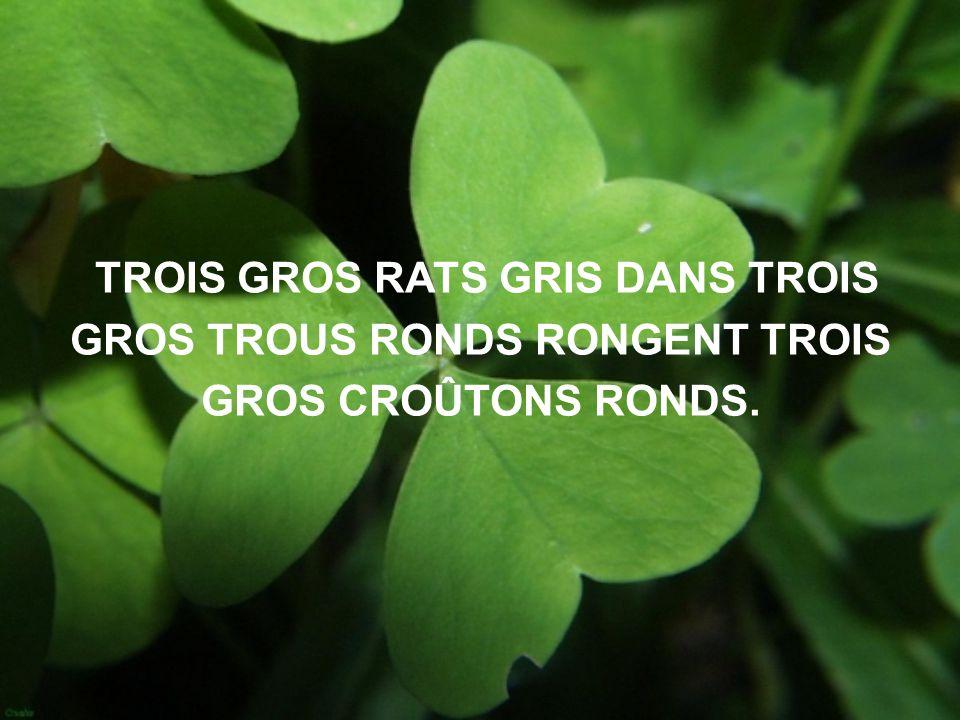 TROIS GROS RATS GRIS DANS TROIS GROS TROUS RONDS RONGENT TROIS