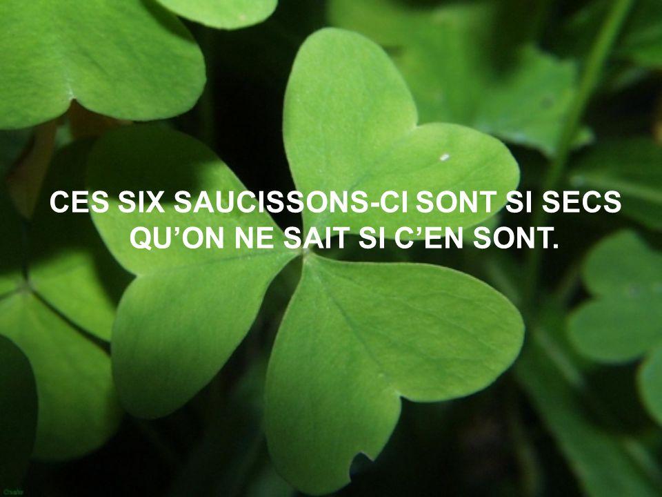 CES SIX SAUCISSONS-CI SONT SI SECS QU'ON NE SAIT SI C'EN SONT.