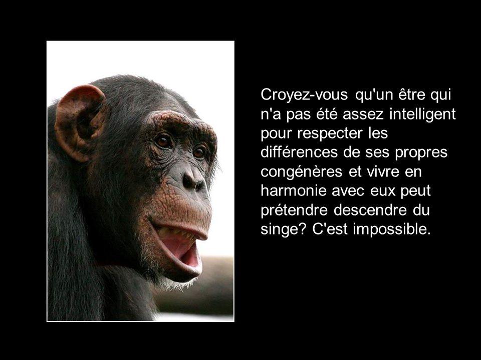 Croyez-vous qu un être qui n a pas été assez intelligent pour respecter les différences de ses propres congénères et vivre en harmonie avec eux peut prétendre descendre du singe.