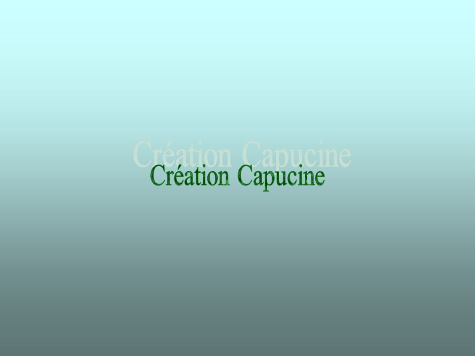 Création Capucine