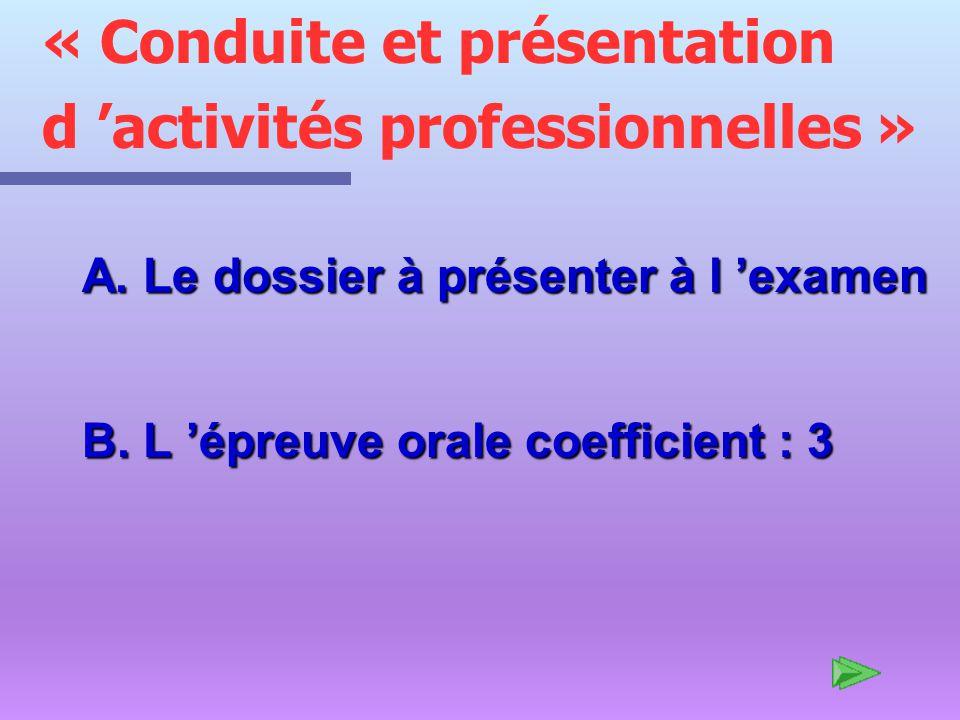 « Conduite et présentation d 'activités professionnelles »