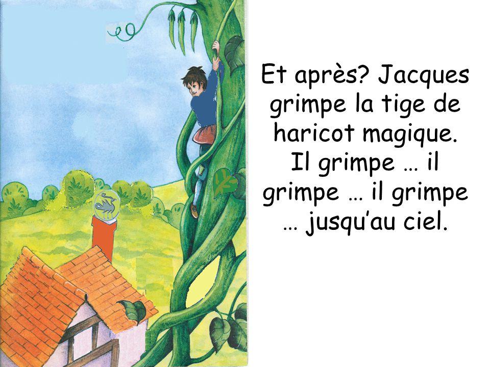 Et après Jacques grimpe la tige de haricot magique.