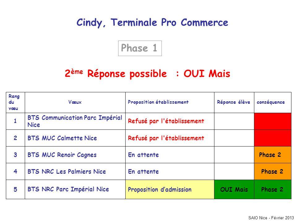 Cindy, Terminale Pro Commerce 2ème Réponse possible : OUI Mais