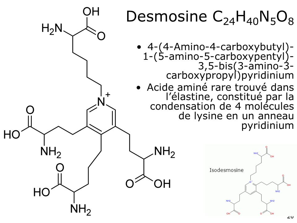 Desmosine C24H40N5O8 4-(4-Amino-4-carboxybutyl)-1-(5-amino-5-carboxypentyl)-3,5-bis(3-amino-3-carboxypropyl)pyridinium.