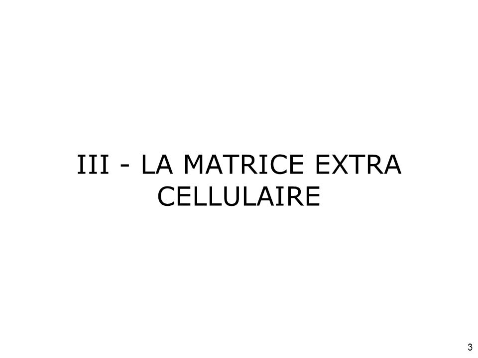 III - LA MATRICE EXTRA CELLULAIRE