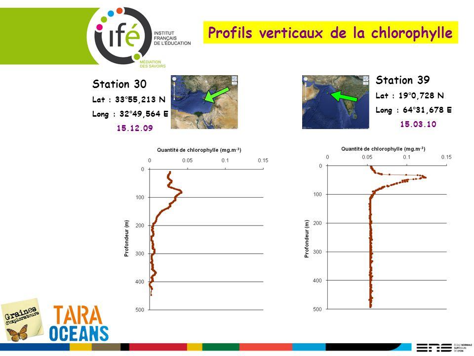 Profils verticaux de la chlorophylle