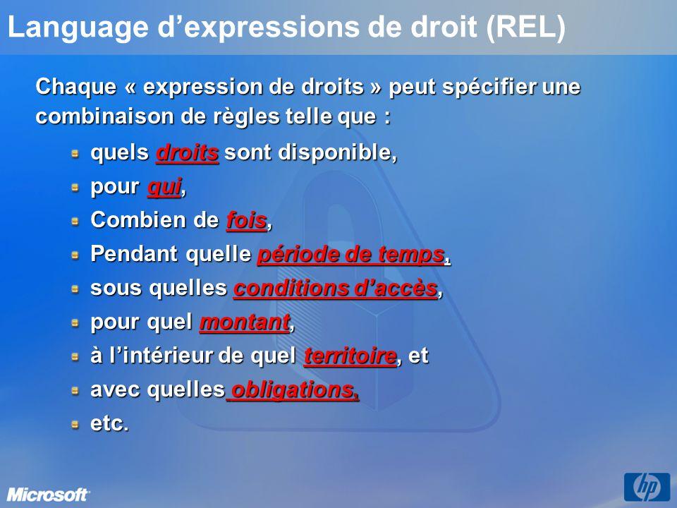 Language d'expressions de droit (REL)