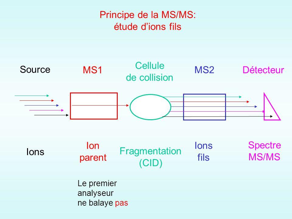 Principe de la MS/MS: étude d'ions fils Cellule de collision Source