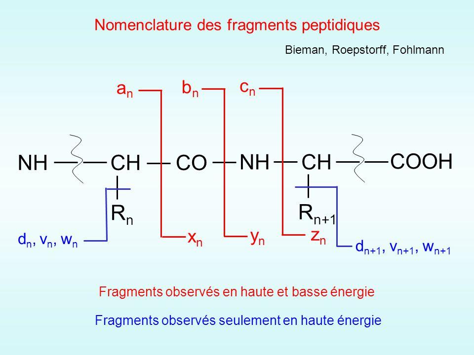 Nomenclature des fragments peptidiques