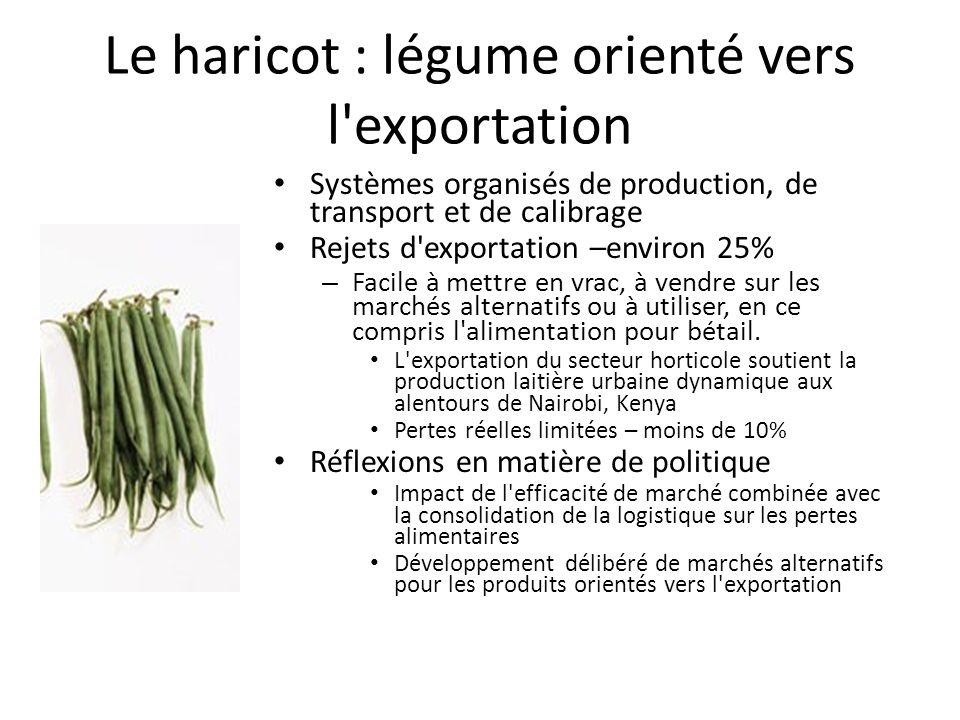 Le haricot : légume orienté vers l exportation