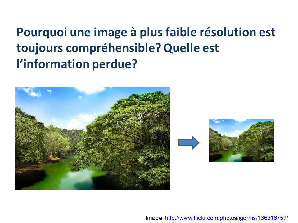 Pourquoi une image à plus faible résolution est toujours compréhensible Quelle est l'information perdue